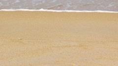 Tiny Crab Scuttles along a Tropical Beach. Video UltraHD Stock Footage