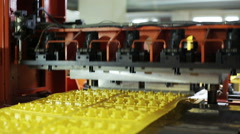 Production of disposable boxes of eggs in the store Stock Footage