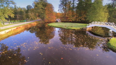 The leaves floating on the lake in the manor Stock Footage