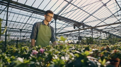 Portrait of happy gardener holding flower pot in greenhouse. RAW video record Stock Footage