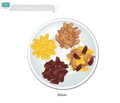 Raisins or Dried Grape, The Popular Snack in Kazakhstan - stock illustration