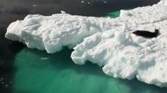 Leopard Seal sleeping on an Iceberg in Antarctica. - stock footage