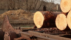 Timber shipping video wood mechanism Stock Footage