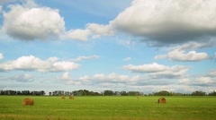 Panorama of field with haystacks near the forest under blue sky with white Stock Footage