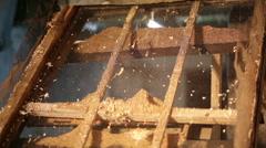 Wood shredder machine industrial compost Stock Footage