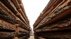 Sawn timber boards wood industry Stock Footage