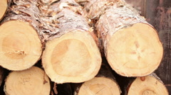 pile of logs processing of biofuels - stock footage