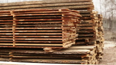 Wood logs Plant industry factory Stock Footage