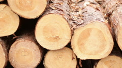 Sawmill bark boards storage wood Stock Footage