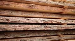 Oak tree bark texture wood Stock Footage