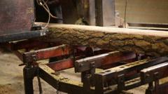 Machine cut logs wooden plant Stock Footage