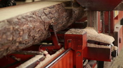 Wood cutting machine nobody industrial Stock Footage