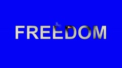 The Word Freedom Burning in Flames to Ashes on a Blue Screen Background - stock footage