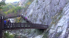 Tourists on the Biryong Falls trail. Seoraksan NP, South Korea. - stock footage