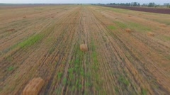 AERIAL VIEW. Bales Of Straw Lying On Mown Field Stock Footage