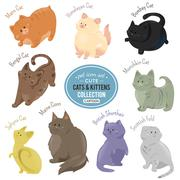 Cute cats and kittens depicting different fur color and breeds - stock illustration