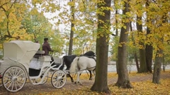 Horse carriage autumn park slowmotion - stock footage