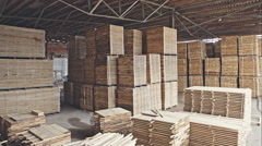 Warehouse sawn wood processing enterprises. RAW video record Stock Footage