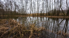 Panning footage of early spring landscape with river Stock Footage