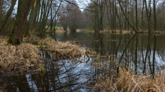 4k timelapse of river in early springtime landscape at bad weather Stock Footage