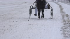 Race horse legs with riders in wheel carts fight on snowy track in winter. 4K Stock Footage