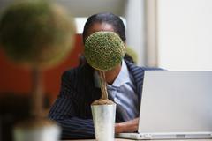 Businesswoman hiding behind bonsai tree - stock photo