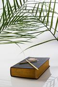 Palm leaf crucifix and bible Stock Photos