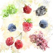Watercolor Fruits Background - stock illustration
