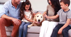 Loving family stroking dog while sitting on sofa Stock Footage