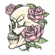 Skull with Roses - stock illustration