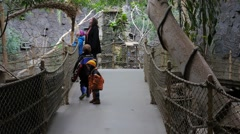 Family looking for birds at the Zoo Stock Footage