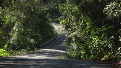 Road through the Jungle Inside The Khao Yai National Park Stock Footage