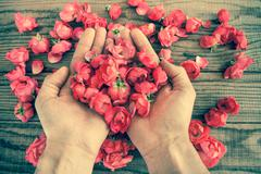 Two hands among red roses on a wooden table, vintage effect Stock Photos