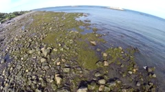St Flavie 3 gaspe, quebec, canada Stock Footage