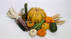 Pumpkin, gourd, squash and corn on white background, Thanksgiving symbols - stock footage