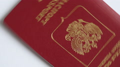 Russian Passports Background Motion Stock Footage