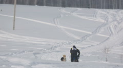 Pair of husky sled dogs with dog-driver Stock Footage