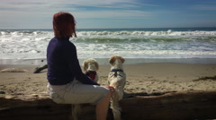 Woman With Dogs Watch Ocean Waves and exit frame left Stock Footage