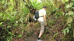 Tourist walking up in the rainforest Stock Footage