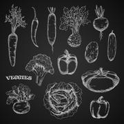 Sketched veggies in engraving style - stock illustration
