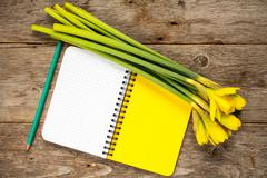 Stock Photo of Daffodil flowers and blank notebook