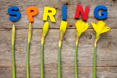 Spring concept - stock photo