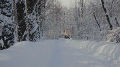 Road through snowy Park Stock Footage