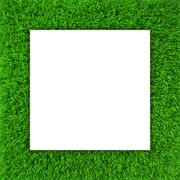 Green grass frame. Background for design website - stock illustration