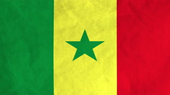 Senegalese flag waving in the wind (full frame footage) Stock Footage