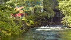 Ketchikan Alaska Creek during Summer Salmon Run Stock Footage