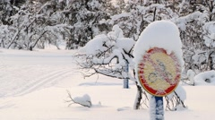 View to the sign covered with snow in the forest in Saariselka, Finland. Stock Footage
