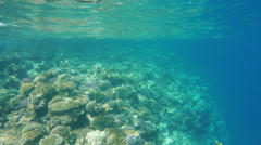 The surface of the water, Underwater - stock footage
