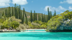 Exotic Island Features of Isle of Pine Stock Footage