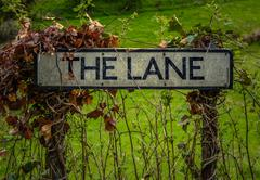 Rural Sign For The Lane - stock photo